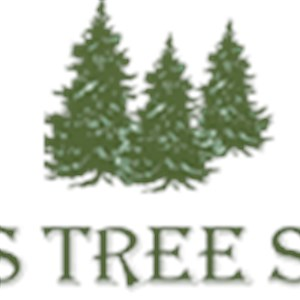 Timmys Tree Service Cover Photo