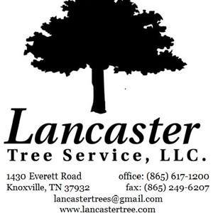 Lancaster Tree Service LLC Cover Photo
