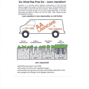 Lawn Fertilization Services