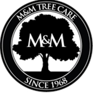 M&m Tree Service Cover Photo