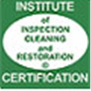 American Mold Removal Logo