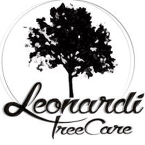 Tree Surgeon Prices