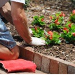 Landscaping Pricing