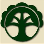 Tree Of Life Stairs Logo