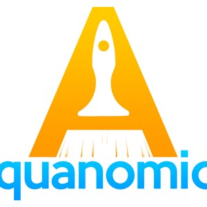 Aquanomics Painting & Pressure Washing Logo