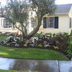 Flores Landscaping Cover Photo