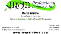 M&M Professional Painters Inc. Logo
