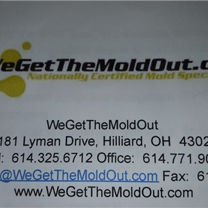 WeGetTheMoldOut Cover Photo
