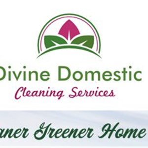 House Cleaning Quotes