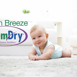 Green Breeze Chem-dry Logo