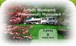 Lawns & Mulch More Logo