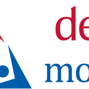 Delta Movers Logo