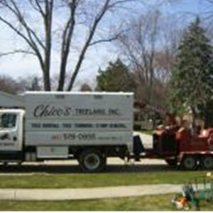 Chicos Tree Land, Inc. Cover Photo