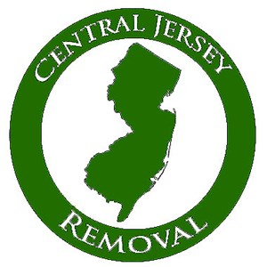 Central Jersey Removal Logo