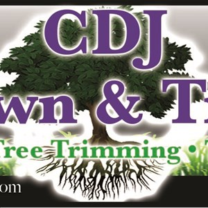 Cdj Lawn AND Tree Logo