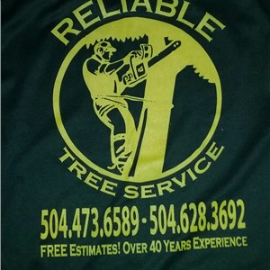 Reliable Tree and Stump Removal Logo