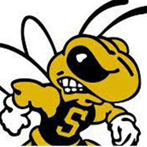 Scrub A Bee Cleaning Services Logo