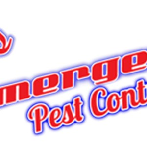 All-secure Pest Management Logo