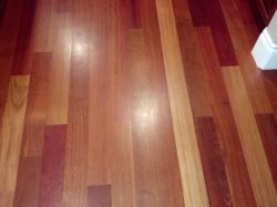 Absolute Hardwood Floors Logo