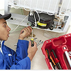 Appliance Repair Cost