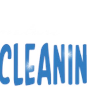 Signature Window Cleaning Logo