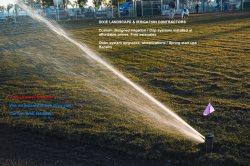 Dixie Landscape & Irrigation Logo