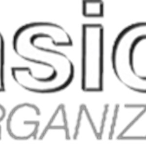 Basic Organization LLC Logo