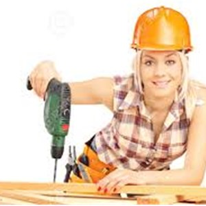 Project Problem Solvers Handyman Specialists LLC Logo
