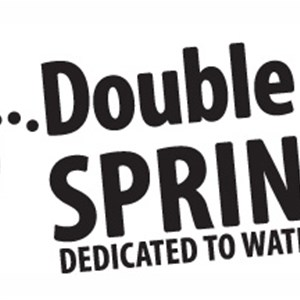 Double Eagle Sprinkler Logo