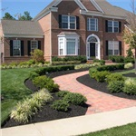 Cheap Landscape Ideas