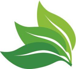 Leafstone Landscapes Logo