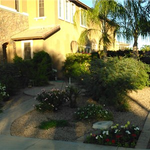Alamo Landscaping and Irrigation Cover Photo