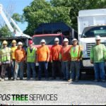Campos Green View Tree Service Landscaping Logo