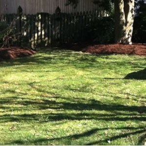 Clean Air Lawn Care - East Denver Branch Cover Photo