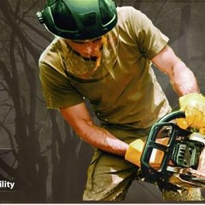 Tree Cutting Companies