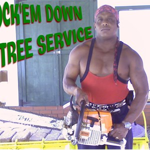 Knockem Down Tree Service Logo