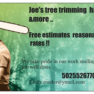 Joes Tree Trimming Hauling & More Logo