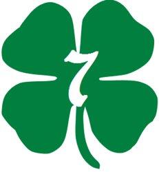 Lucky Seven Services LLC Logo