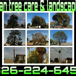 Egan Tree Care & Landscaping Logo