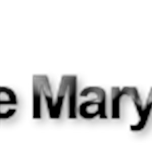 Tile Maryland Logo