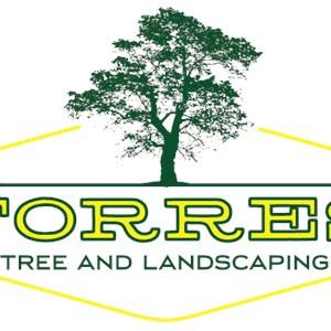 Torrestreeandlandscaping Logo
