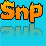 Snp Painting and Remodeling Logo