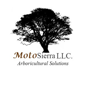 Motosierra LLC Cover Photo