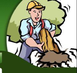 Bobbys Tree Service Logo