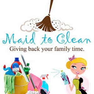 The Cleaning Genies Pro. Logo