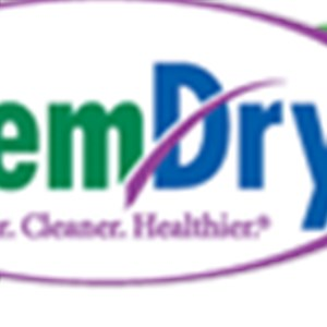 Healthy Living Chem-dry Logo