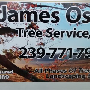 James Osteen Tree Service llc Logo