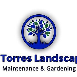 Scotts Lawn Care Program