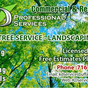 Kd Professional Services Cover Photo