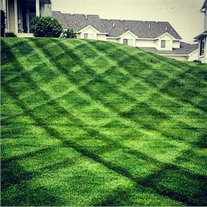 Devries Lawn & Landscape Logo